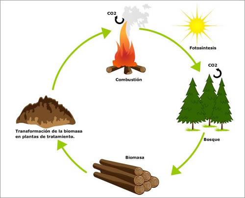 proceso_biomasa